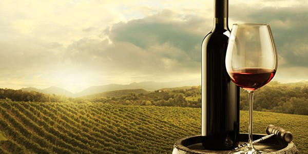 Идея девичника - дегустация вина в Испании